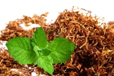 Shredded tobacco and mint leaves