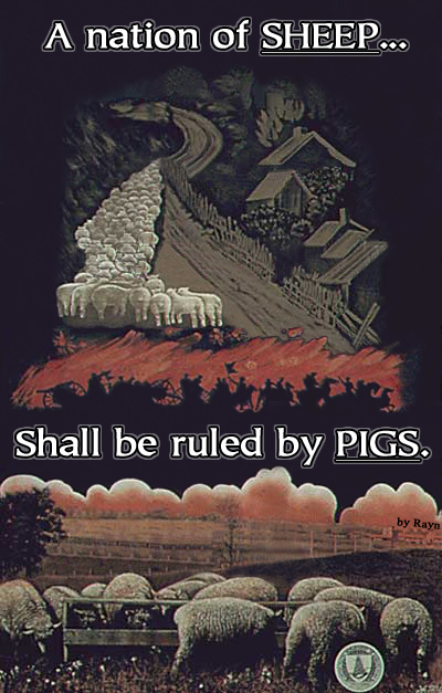 """A nation of SHEEP... Shall be ruled by PIGS."" (Artwork by Rayn, and originally located here)"