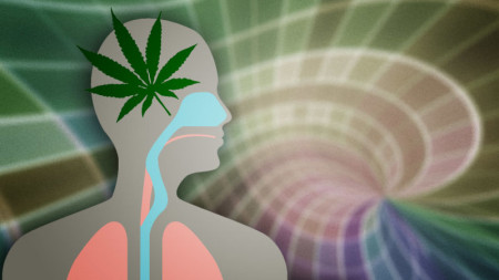 2011-02-08 - Pseudo-Scientific Anti-Cannabis Propaganda, or Fact