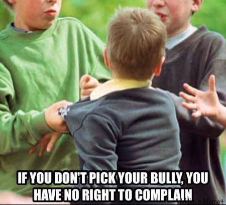 """If you don't pick your bully, you have no right to complain"""