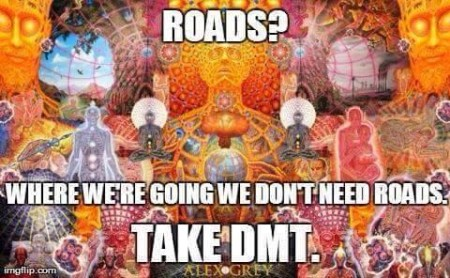 """Roads? Where we're going, we don't need roads. Take DMT."""