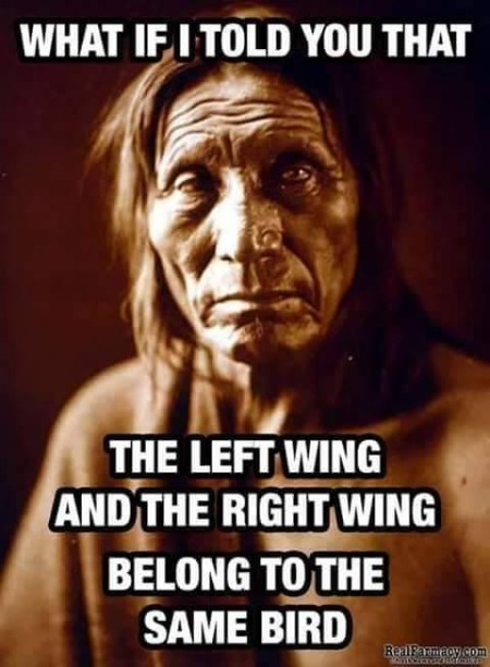 """What if I told you that the left wing and the right wing belong to the same bird?"""