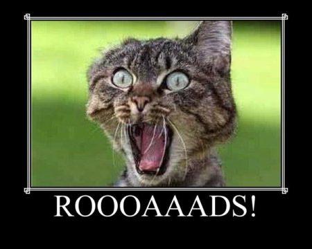 """Roooaaads!"""