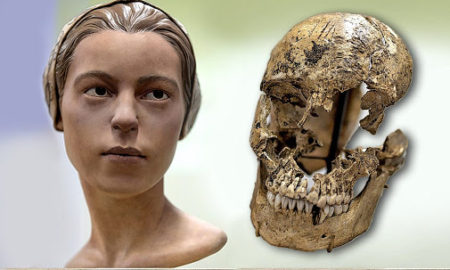 Reconstructed remains of 14-year-old girl living in Jamestown colony, who shows tell-tale sign of being cannibalized