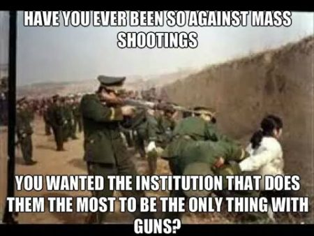 """Have you ever been so against mass shootings... You wanted the institution that does them the most to be the only thing with guns?"""