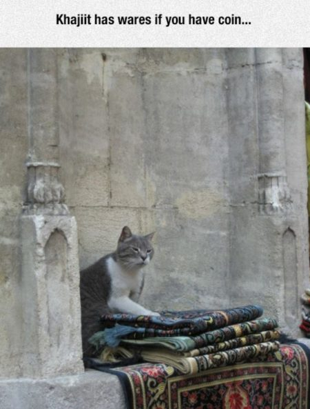 """Khajiit has wares if you have coin"""